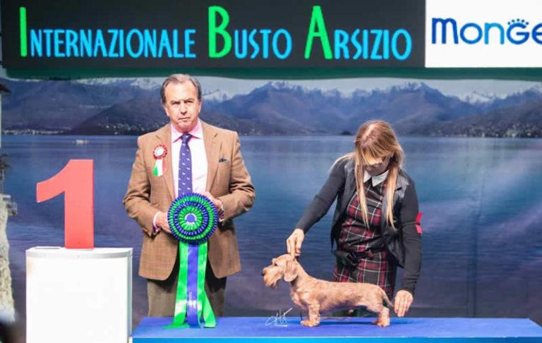 Insubria Winner 2.11.2018