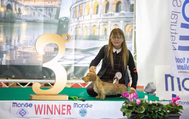 Expo Internazionale Roma 2018